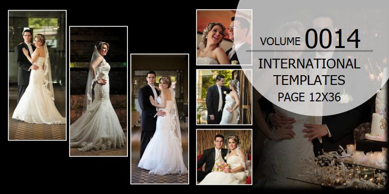 Volume - 0014 Page 12x36